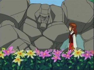 Pokémon vs. Digimon Golem_Likes_Flowers